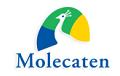 molecatenRabatte & Rabatte 2021