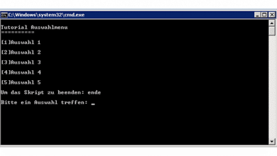 Bild von Batch-Datei mit Auswahlmenü