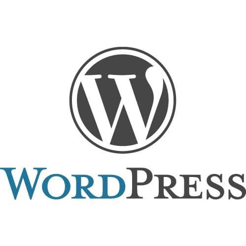 Bild von Automatische Updates in WordPress 3.7 deaktivieren