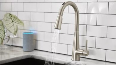 Photo of CES 2020: Moen presents Smart Tap