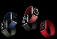 Bild von Solo-Loop-Armbänder von Apple passen nicht