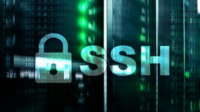Bild von Synology: Per SSH-Konsole in den God-Mode