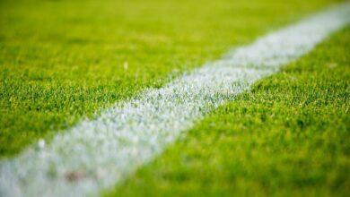 Bild von Wie der Fussball zum grössten Wettsport der Welt wurde